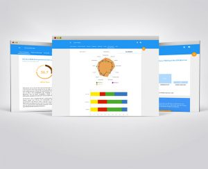 e-platform voor entrepreneurs resultaten