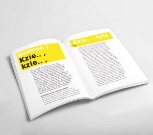 boek kzie kzie wat jij niet ziet intrapreneur inhoud