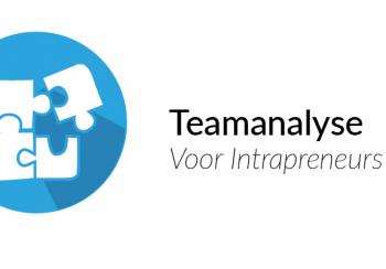 producten en diensten Teamanalyse intrapreneurs