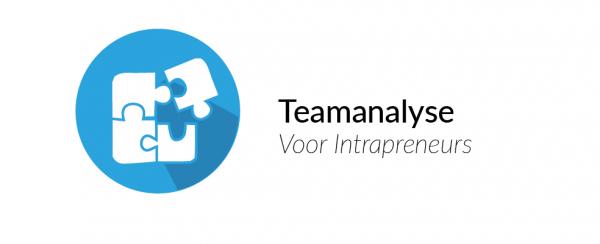 Op basis van de Intrapreneur Scan meet de Teamanalyse de sterke en zwakke punten van het team van medewerkers.
