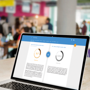 Intrapreneur scan Entrepreneurial Index