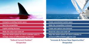 Differences in blue ocean strategies
