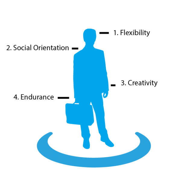 4 intrapreneur profile aspects